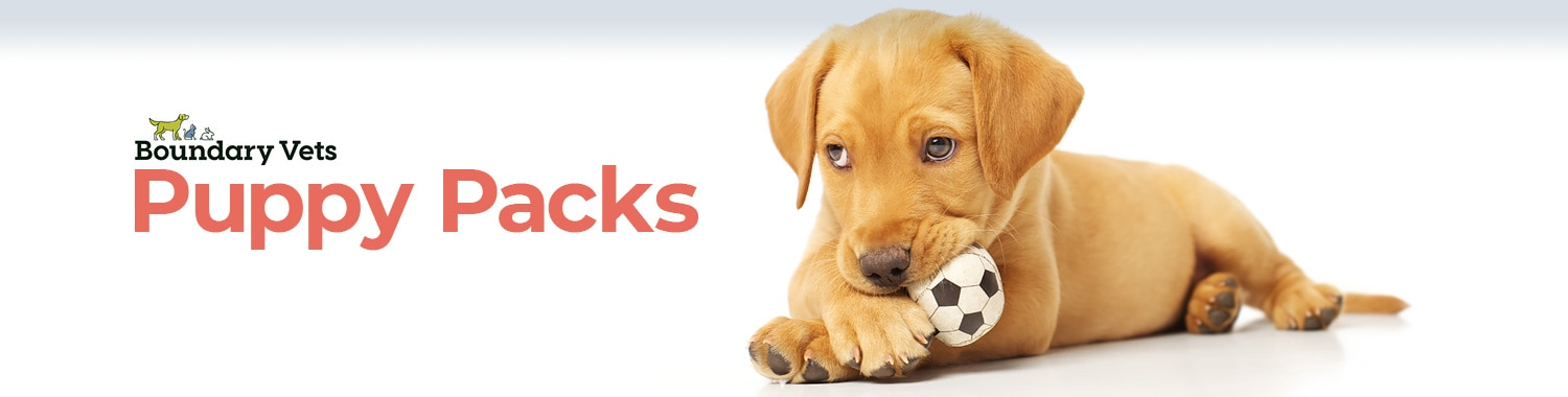 Puppy Packs | Puppy Packages