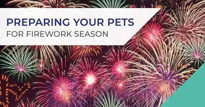 Preparing your pets for firework season