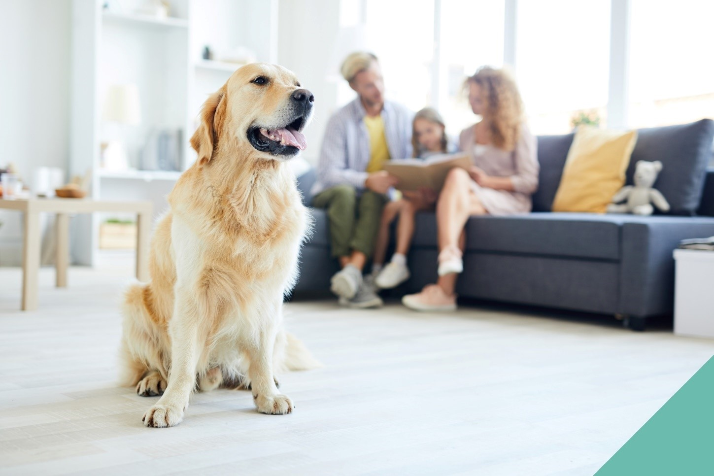A dog sititng in front of his family